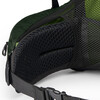 Osprey M's Aether AG 85 Adriondack Green